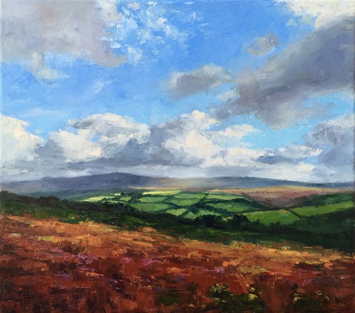 Exmoor painting light