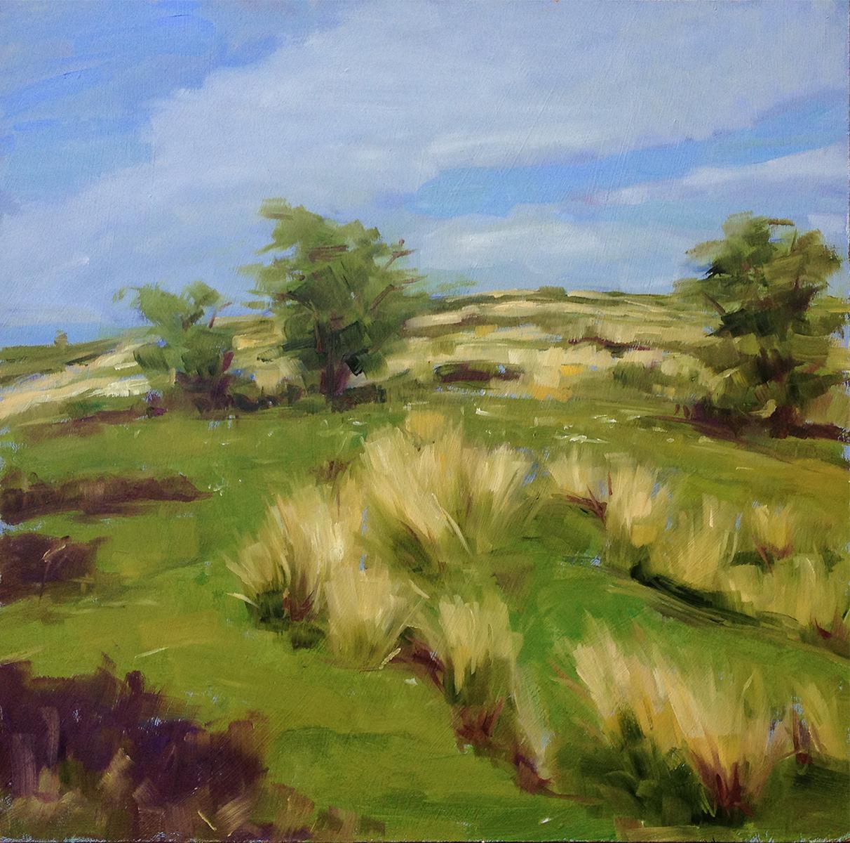 Exmoor Hill